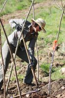 Doris Hausleitner_Arrow Lakes restoration