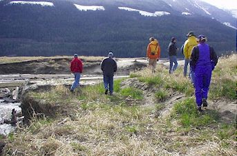 Here the group is walking along the edge of a seeded area, looking at erosion in a side channel near Drimmie Creek.
