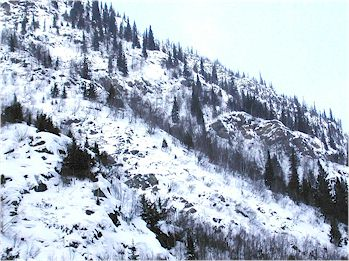 Typical mountain goat winter habitat, Parks Canada photo