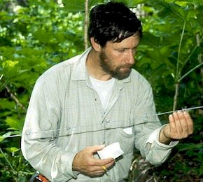 Michael Proctor plucking bear fur from a barbed wire hair trap. John Woods photo.