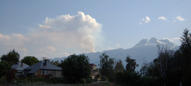 revy forest fire