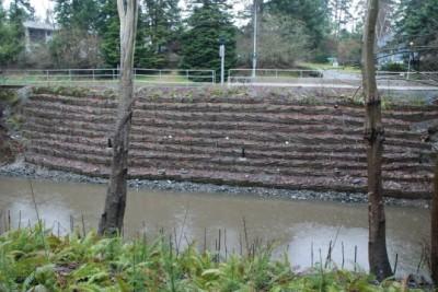 soil bioengineering treatment